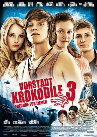 Деревенские крокодилы 3 / Vorstadtkrokodile 3 (2011/DVDRip)